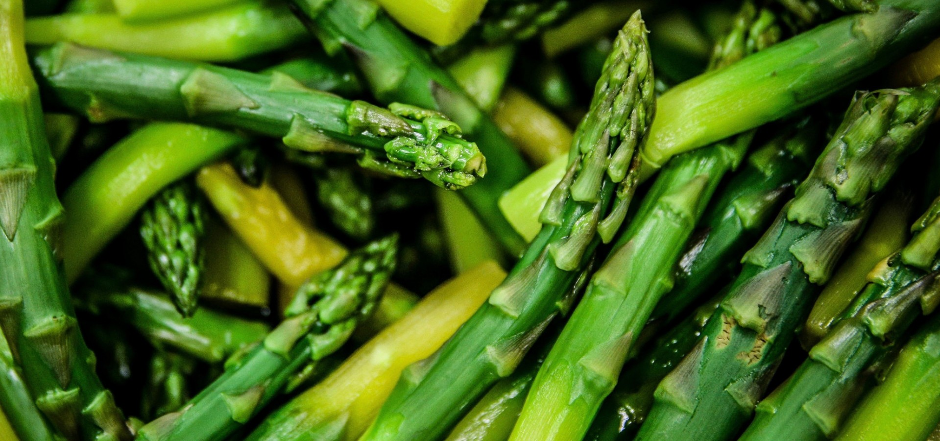 Asparagus days in GamberoRosso